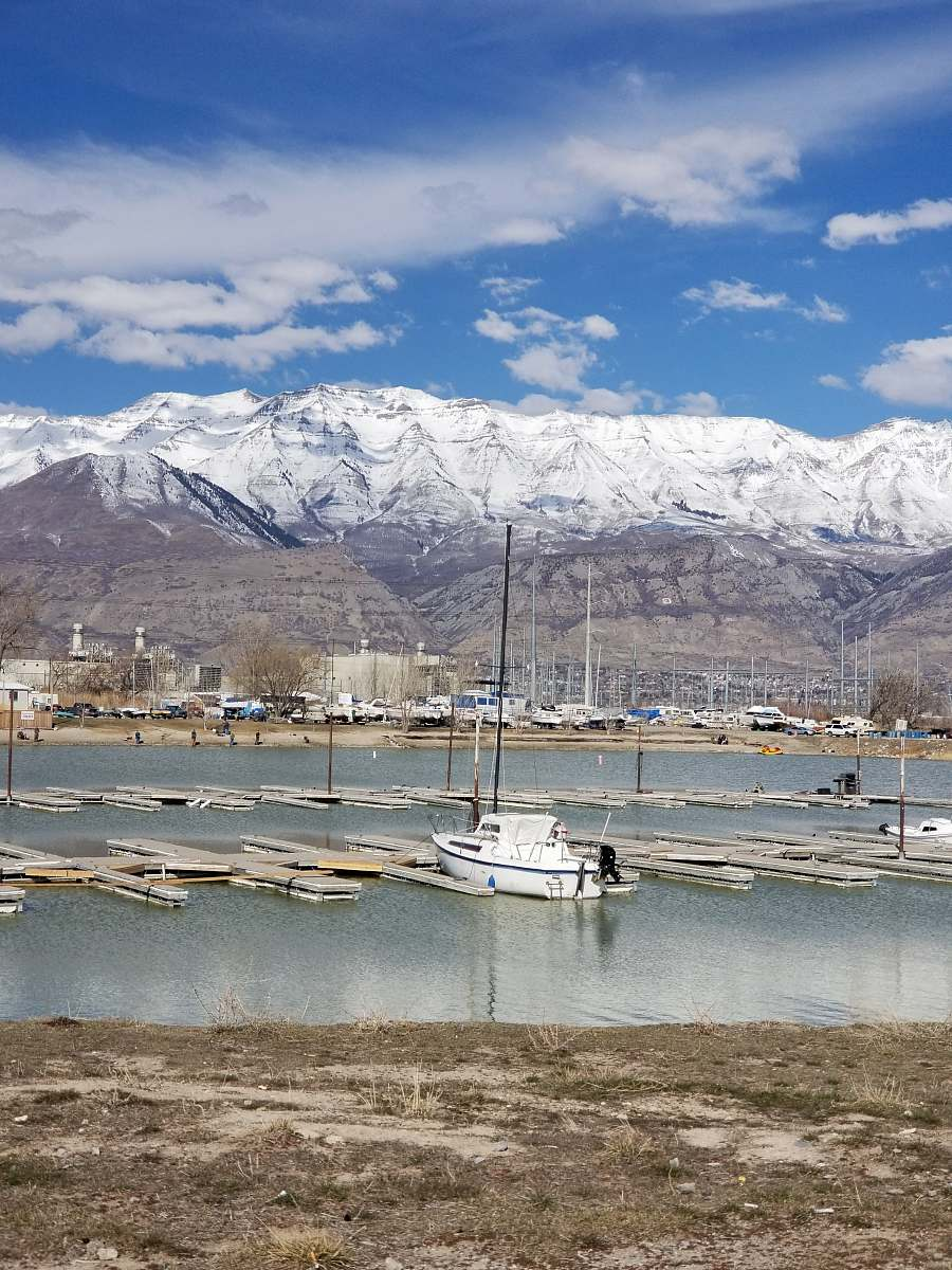 stock photos free  of transportation white yacht docking under blue sky vehicle