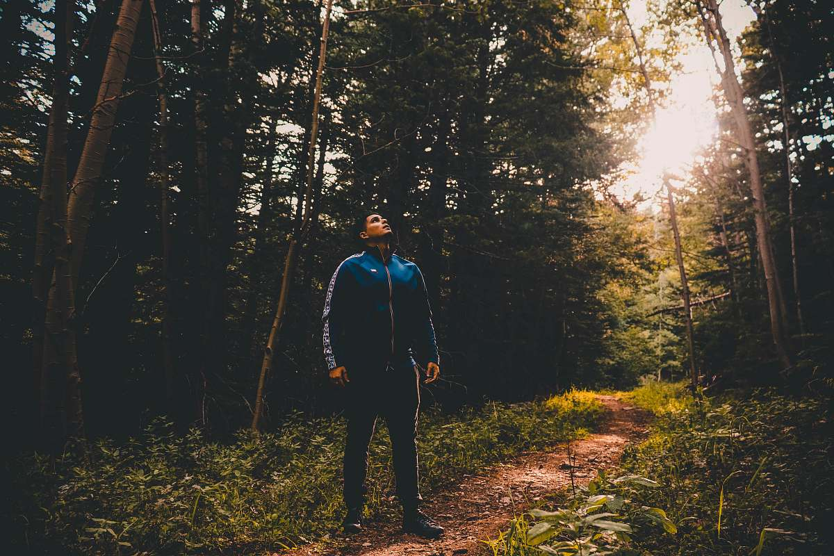 stock photos free  of people man standing near green trees during daytime person