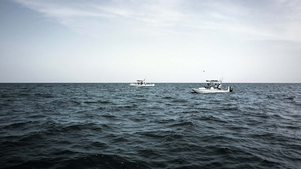 stock photos free  of boat two white motor boats on sea during daytime vehicle