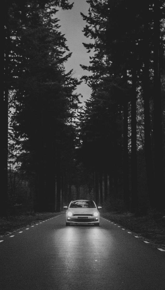 stock photos free  of car car passing through road between trees transportation