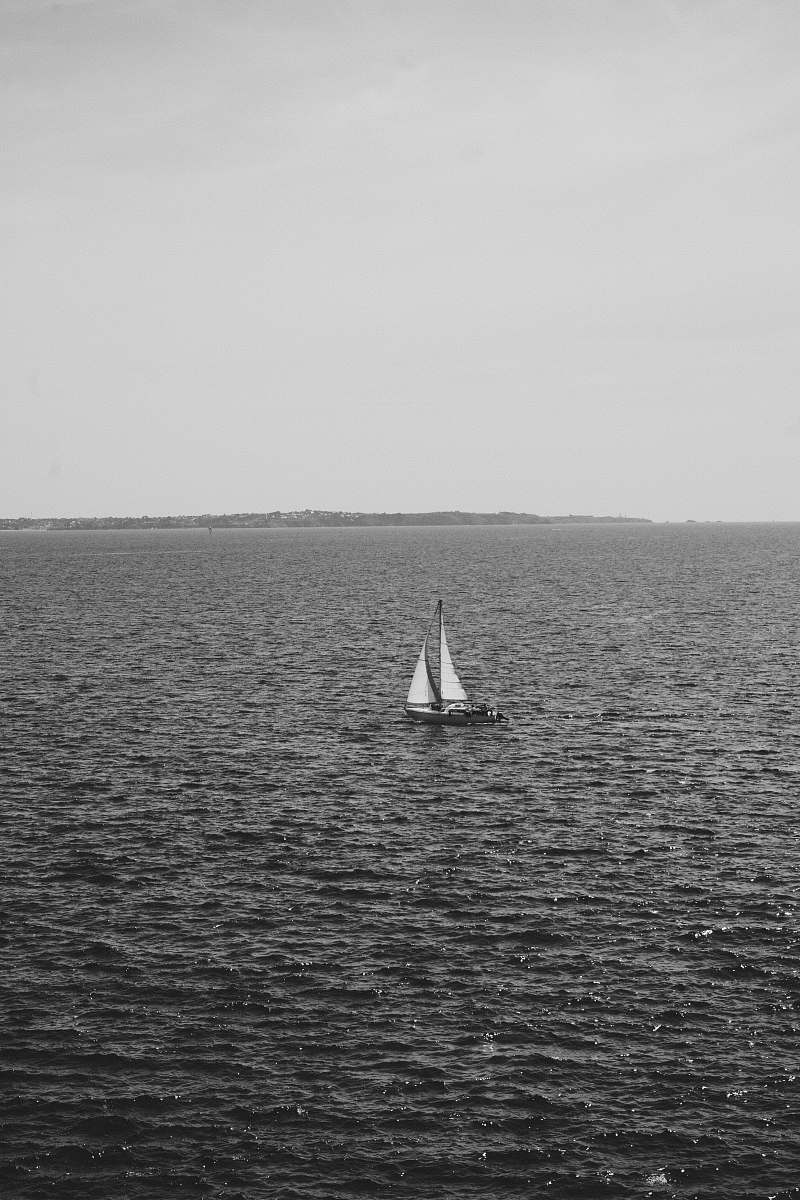 stock photos free  of grey sailboat in sea transportation