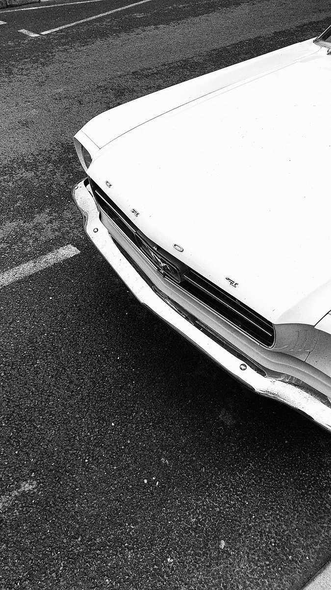stock photos free  of bumper white car transportation