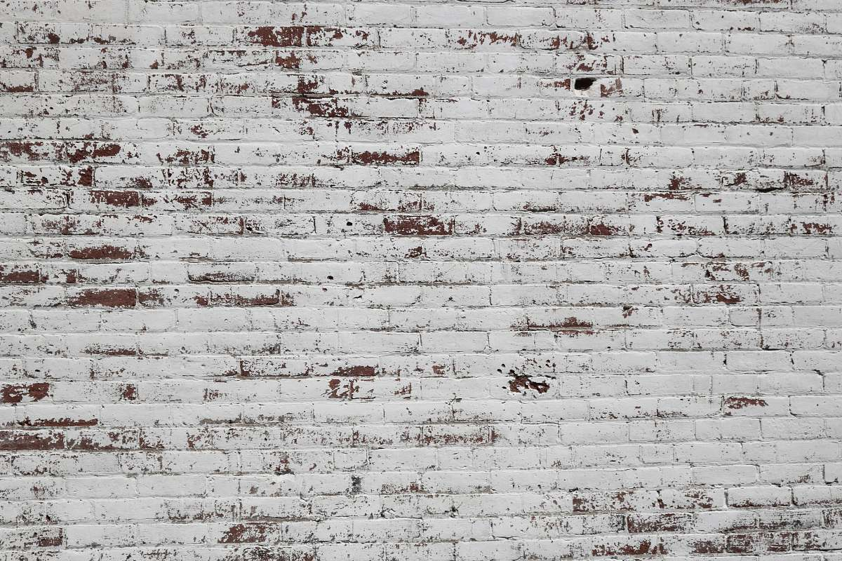 stock photos free  of background white and brown concrete brick wall texture