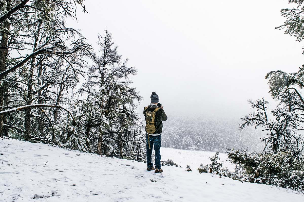 stock photos free  of plant man standing on field covered with snow tree