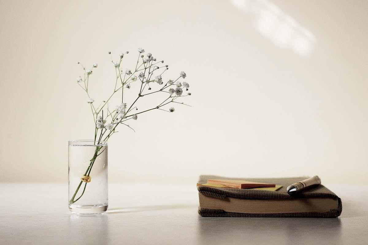 stock photos free  of vase white petaled flower in glass vase beside book jar