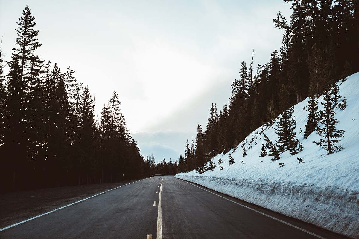 stock photos free  of freeway empty concrete road in between forest during daytime highway