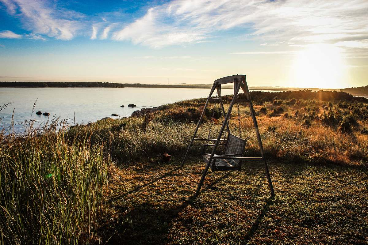 stock photos free  of outdoors gray wooden bench swing facing body of water surrounded by grass swing