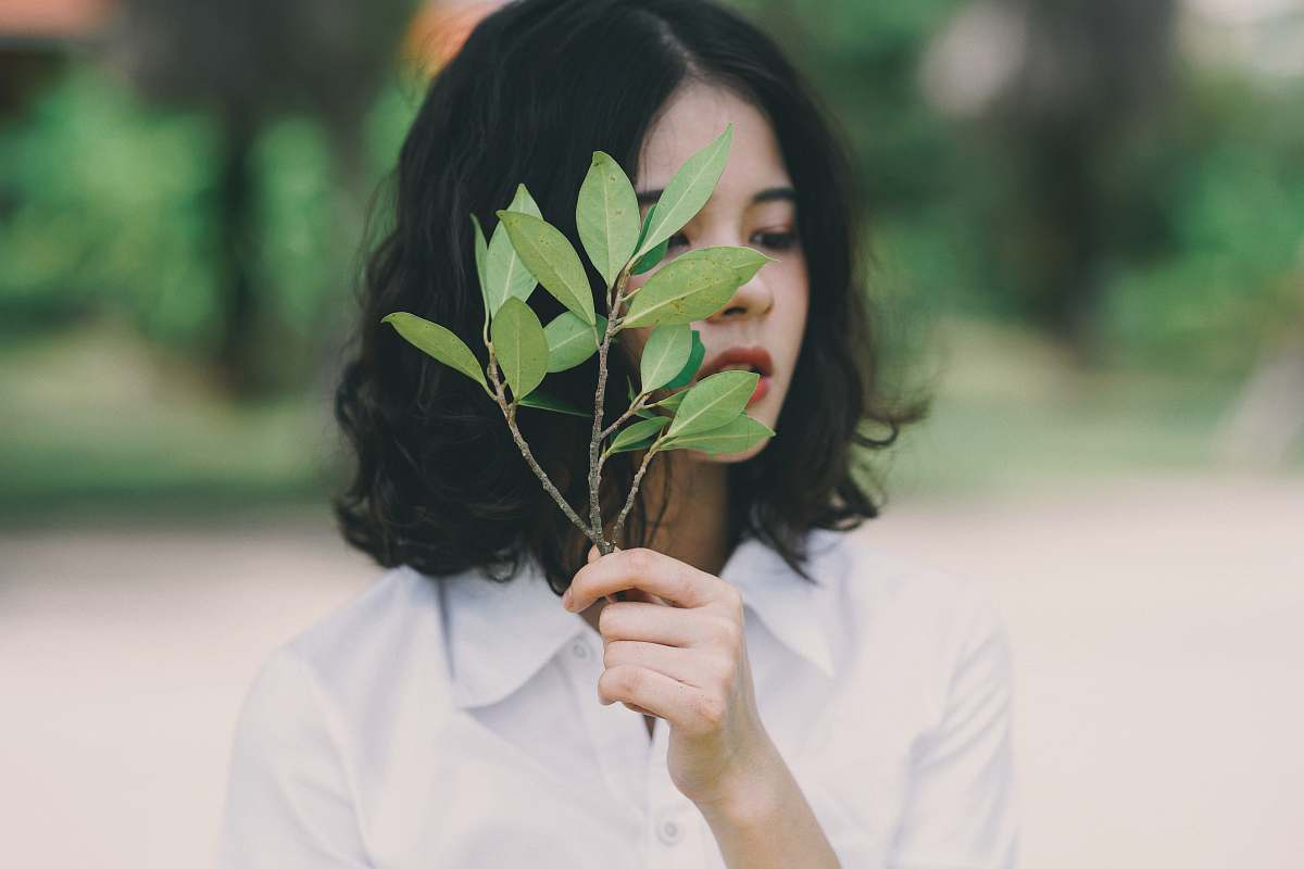 stock photos free  of person woman holding leaves human