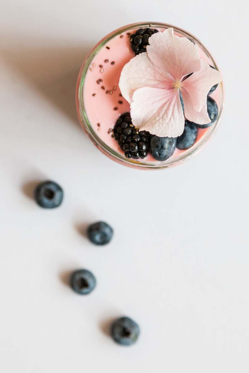 stock photos free  of drink pink beverage on glass with blackberries and pink flower on top pink