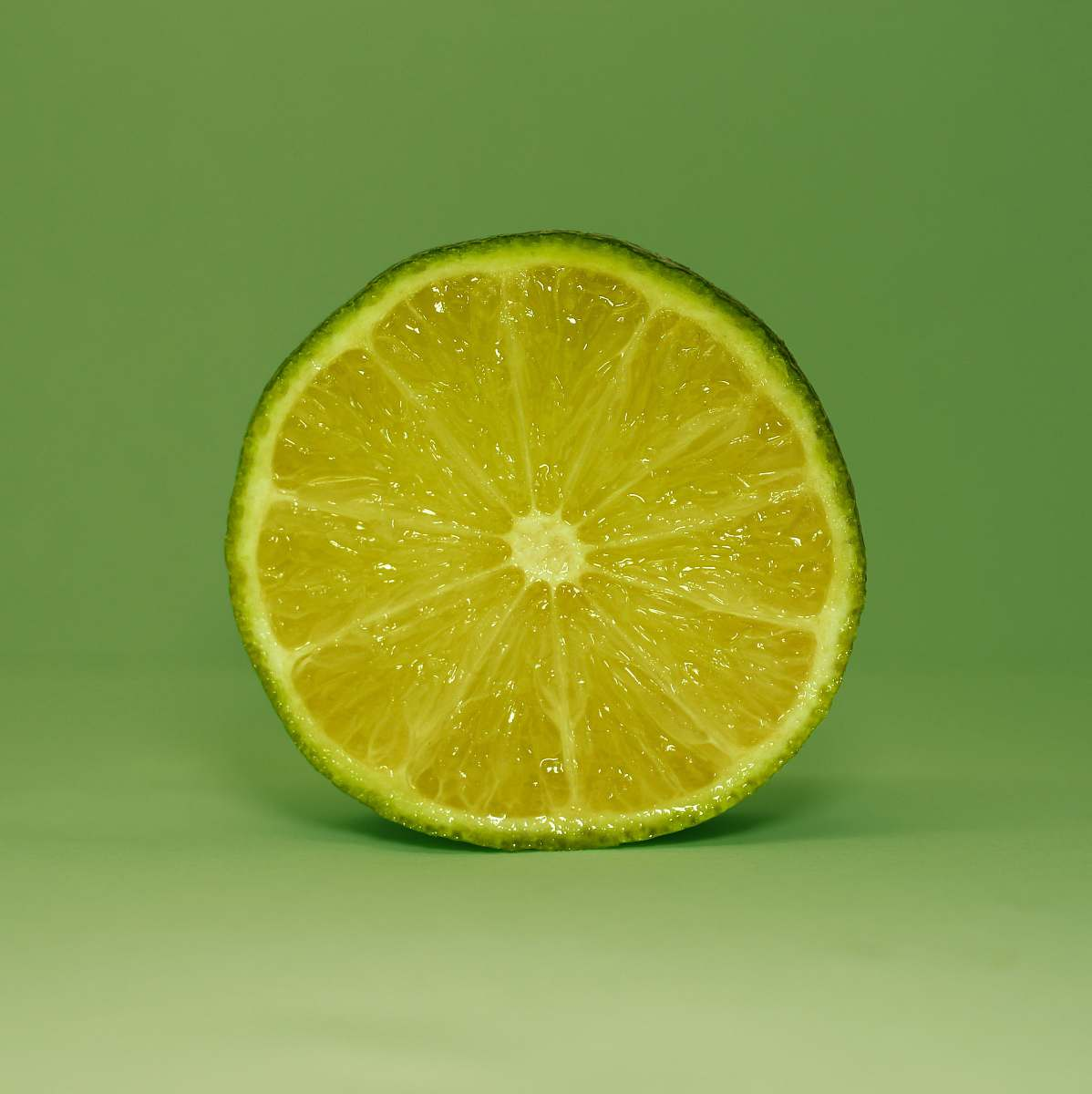 stock photos free  of food round citrus fruit plant