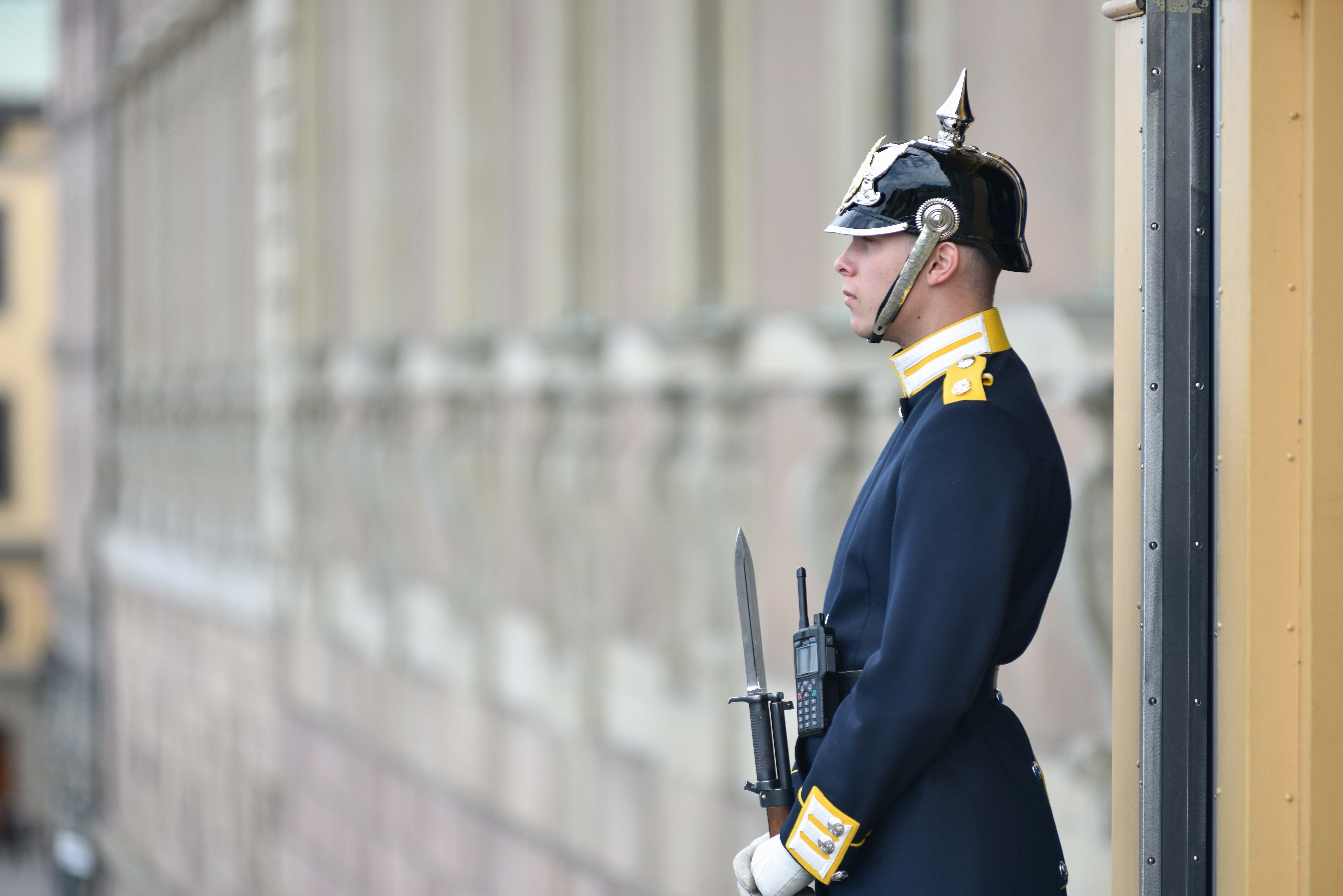 People Royal Guard Holding Rifle Person Image - Free Stock