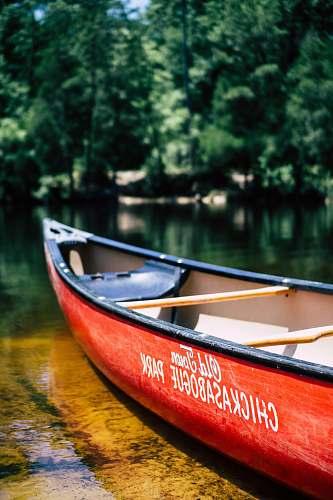 canoe canoe boat on body of water near trees rowboat