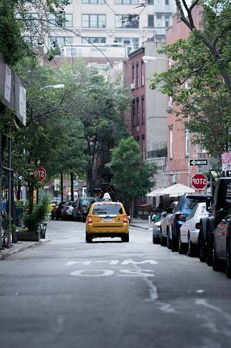 photo vehicle yellow taxi cab on gray concrete road top near buildings and trees during daytime taxi free for commercial use images
