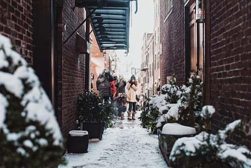 plant girl standing in between buildings surrounded by plants covered with snow snow