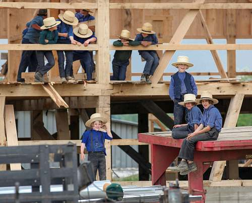 person group of children wearing blue shirts and pants climbing on wood during daytime people