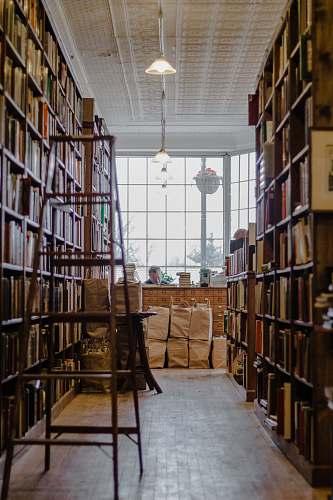 indoors man sitting inside librabry interior design