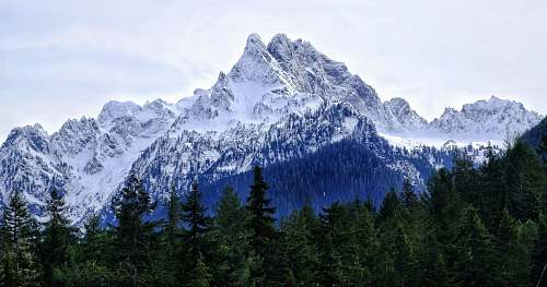 nature trees under snow capped mountain outdoors