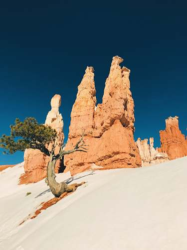 outdoors low angle photo of brown cliff and tree bryce canyon national park
