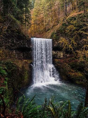 water scenery of waterfalls waterfall