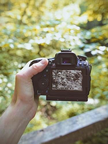 human black DSLR camera turkey run state park