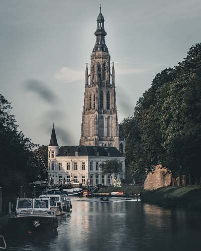 building architectural photography of white and gray building spire
