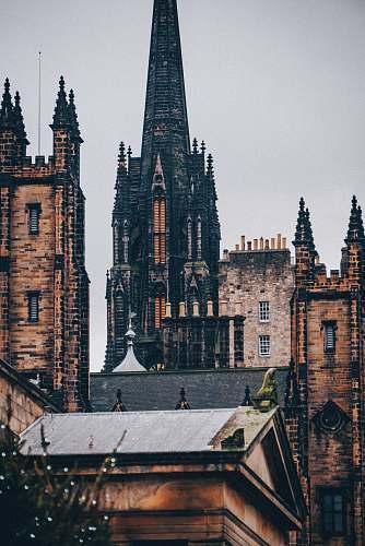 spire black and brown European city buildings steeple