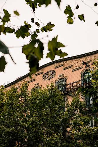 building brown bricked building by trees under white skies tower