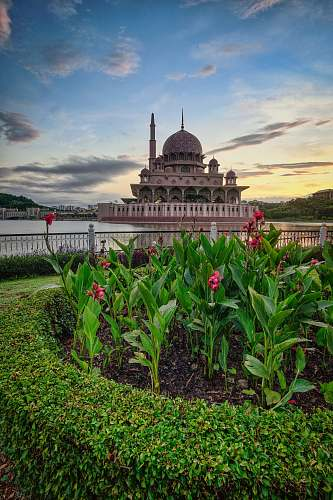 building brown dome building viewing pink flower garden under blue and white skies dome