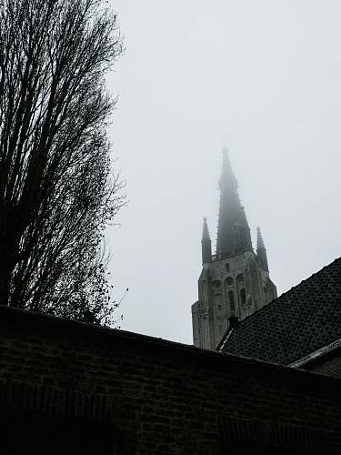spire buildings and bare tree during day steeple