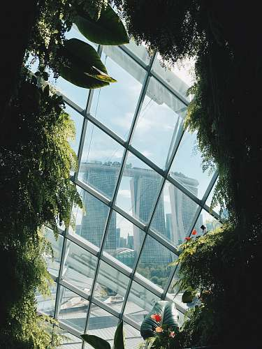 building green leafed plants dome