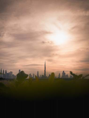 building green-leafed plants with Burj Khalifa view during daytime steeple