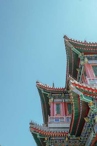 building low angle photo of buildings pagoda