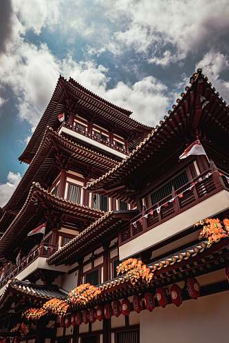 building low-angle photography of brown and white temple pagoda