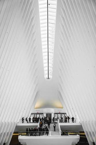 building low-angle photography of people on staircase human