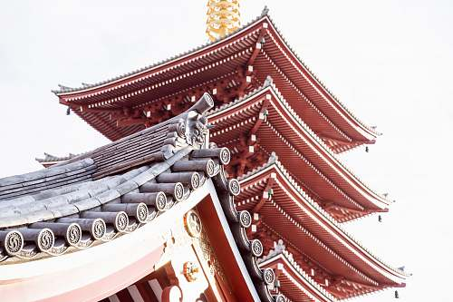 building low-angle photography of Sensho-ji Temple worship