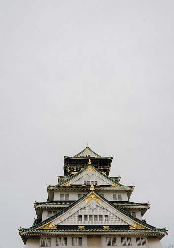 castle white and black pagoda building japan