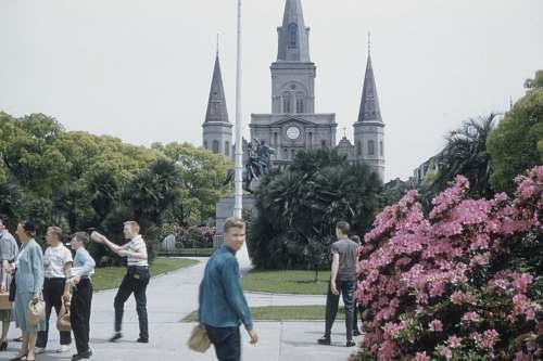 architecture people walking near pink-petaled flower spire