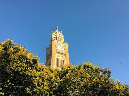 architecture white and brown clock tower tower