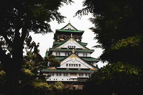 architecture white, green, and gold pagoda building surrounded by green trees pagoda