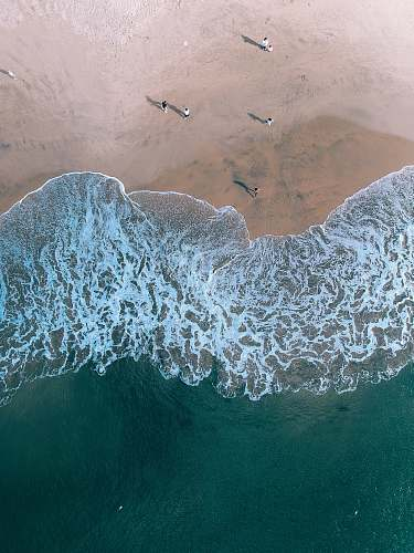 santa cruz aerial photography of people on beach united states