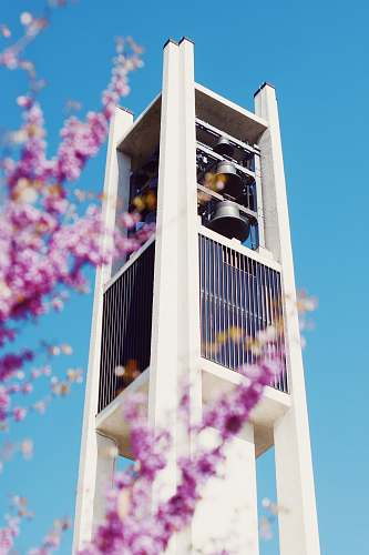 building white high rise building tower