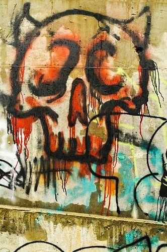 graffiti close-up photo of skull mural ybor city wine bar