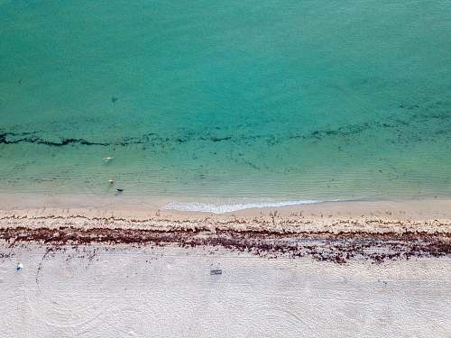 nature aerial photography of beach coast