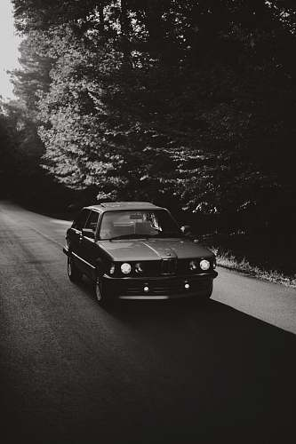 car grayscale photo of BMW coupe near black trees automobile