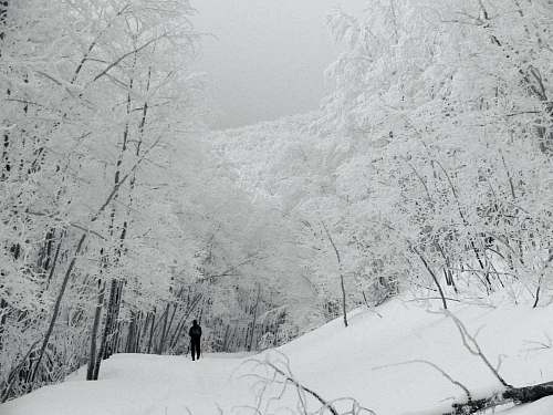 grey man walking on snow covered hills during daytime snow