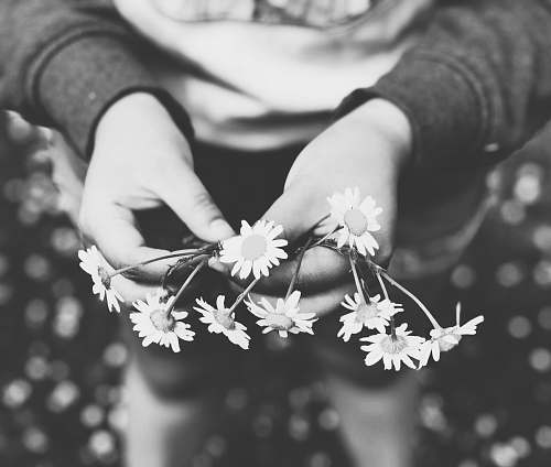 grey person holding white flowers plant