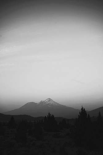grey snow-covered mountain near pine trees during daytime mount shasta