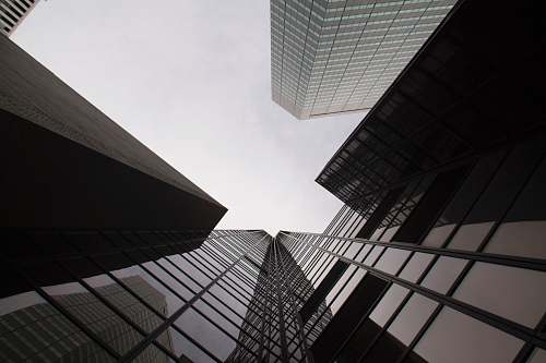 grey worm's eye view of building architecture