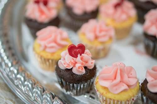 dessert shallow focus photography of cupcakes cupcake