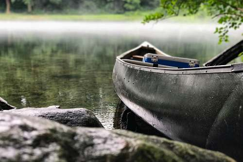 boat focus photo of gray and black canoe on body of water under green leaf tree rowboat